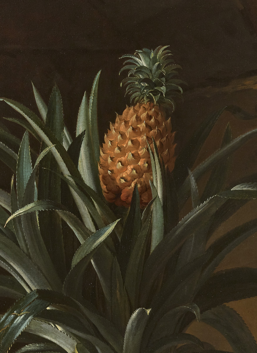 "Jean-Baptiste Oudry (1686-1755), ""Un ananas dans un pot, posé sur une plinthe de pierre"" (Pineapple in a pot on a stone plinth), 1733, oil on canvas,"