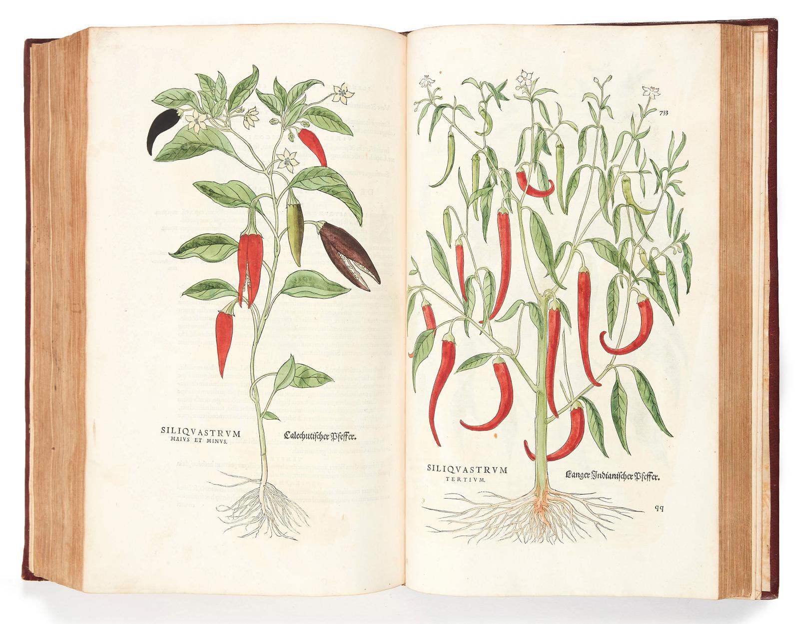 Leonhart Fuchs(1501-1566), De historia stirpium […], Bâle, Michael Isingrin, 1542, exemplaire de l'édition originale, in-folio, illustré de 512planc