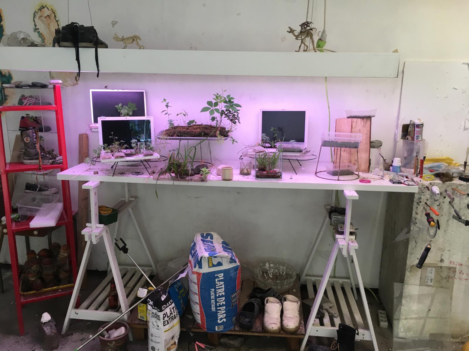 L'atelier de Michel Blazy à L'Ile-Saint-Denis.