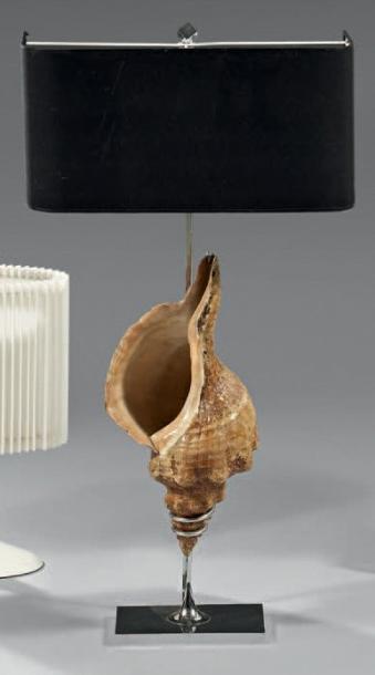 376€Travail français, 1970, lampe ornée d'un coquillage Bufonaria scrobilator-tritonides, armatureen métal, h.81,5cm.Drouot, 10décembre2014. Ma