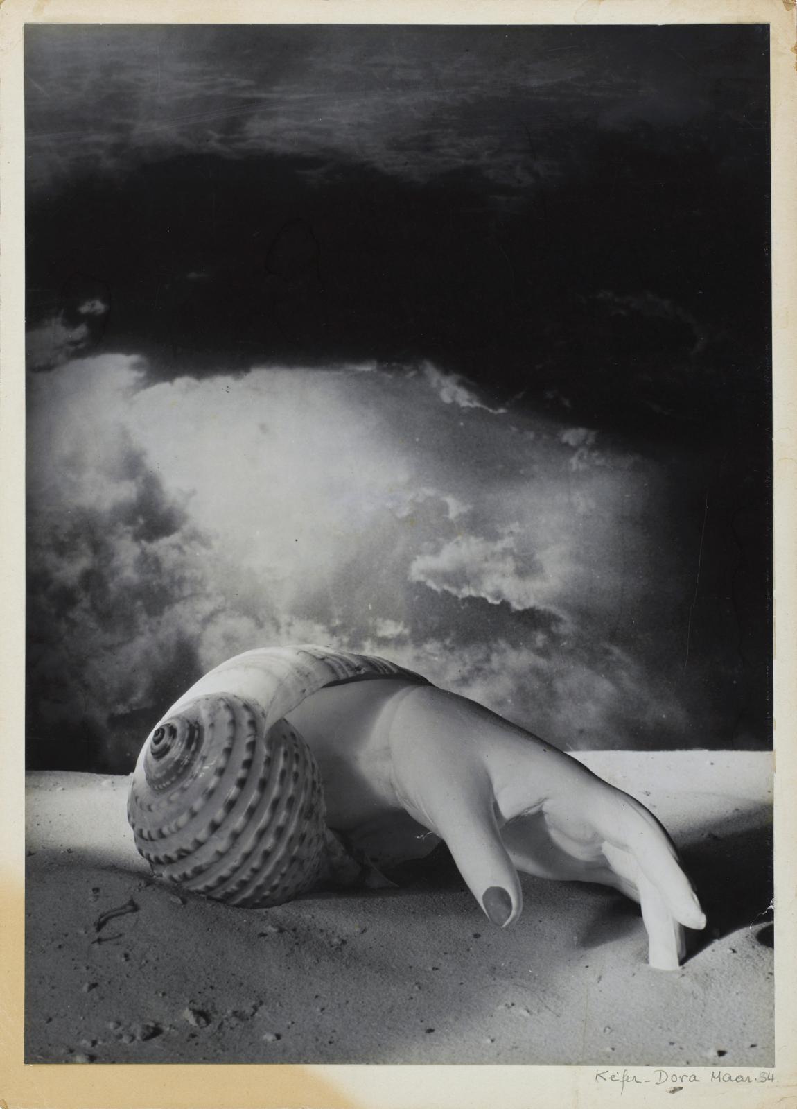 Dora Maar, Sans titre [Main-Coquillage], 1934, épreuve gélatino-argentique.
