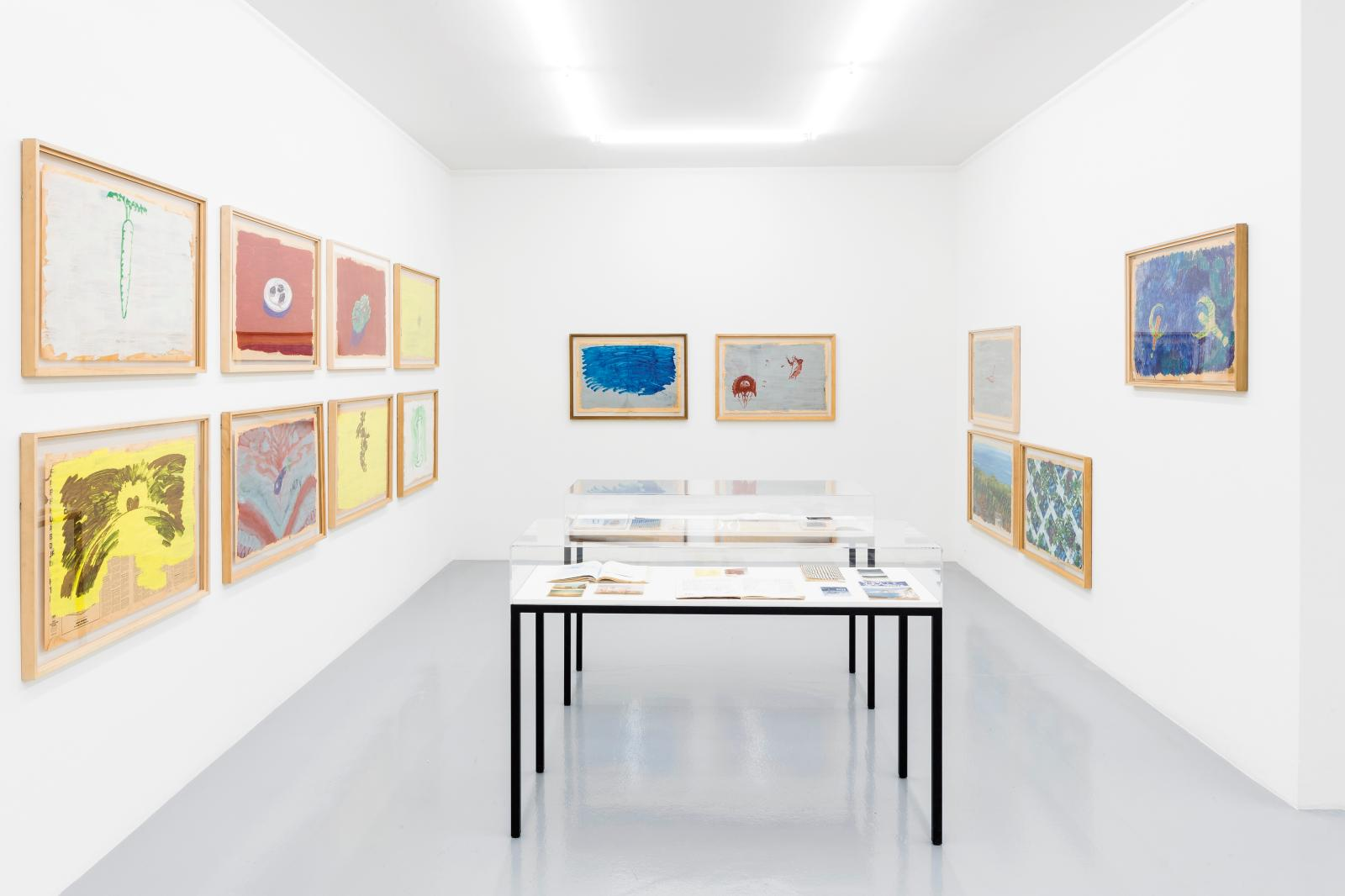 Vue de l'expostion «Paul Thek: Ponza and Roma» à la galerie Mai 36.