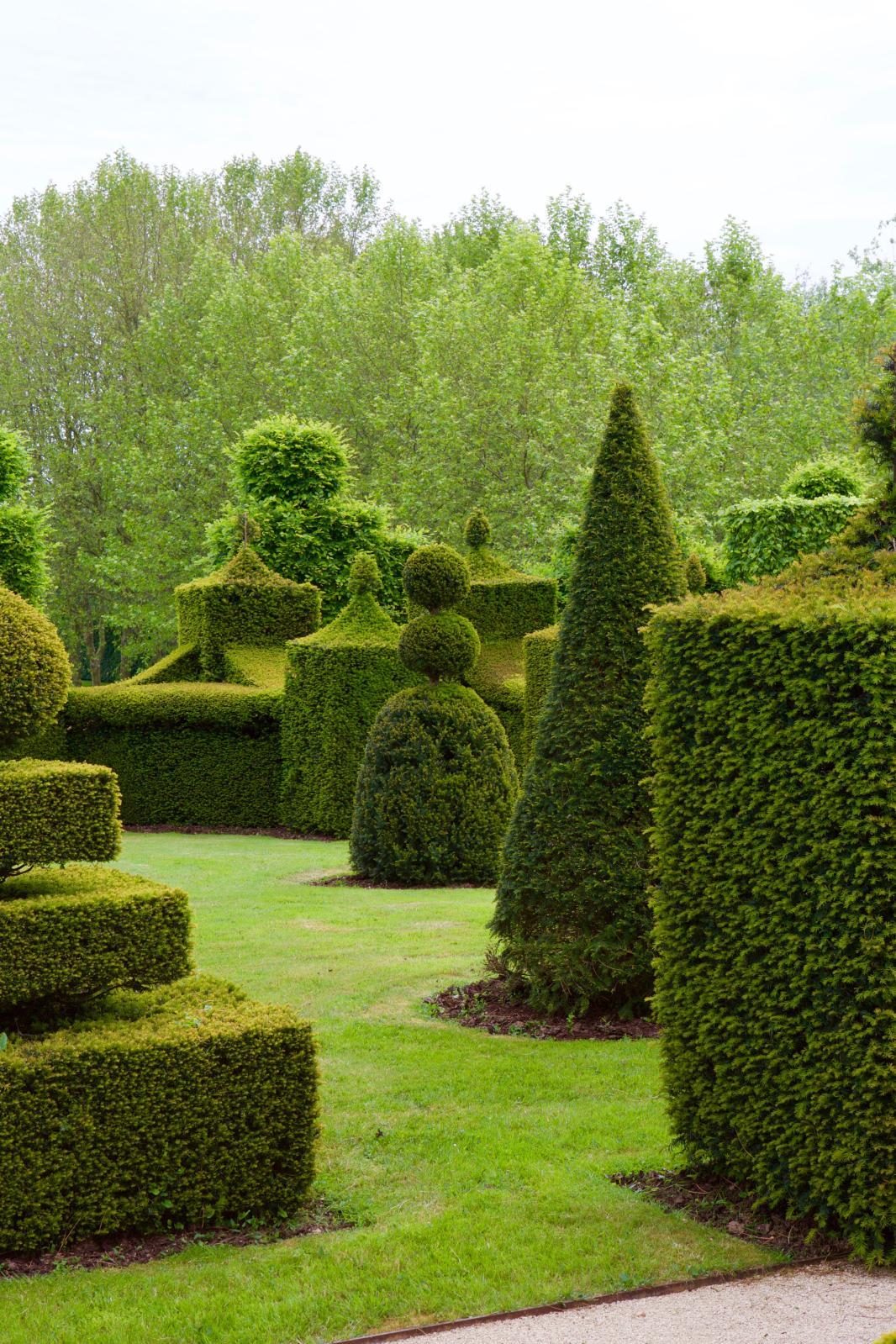 Le jardin de William Christie, à Thiré.