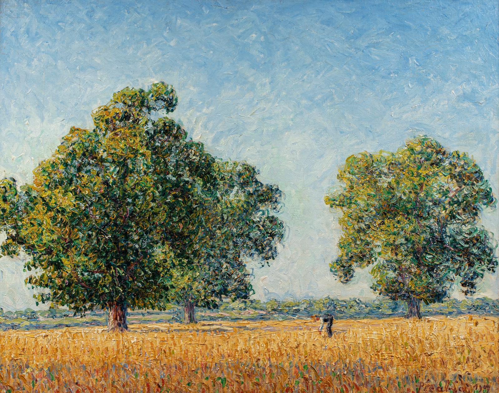 Francis Picabia(1879-1953), Les Châtaigniers à Munot, effet de soleil, 1907, huile sur toile d'origine, 73x92cm. Adjugé: 314600€