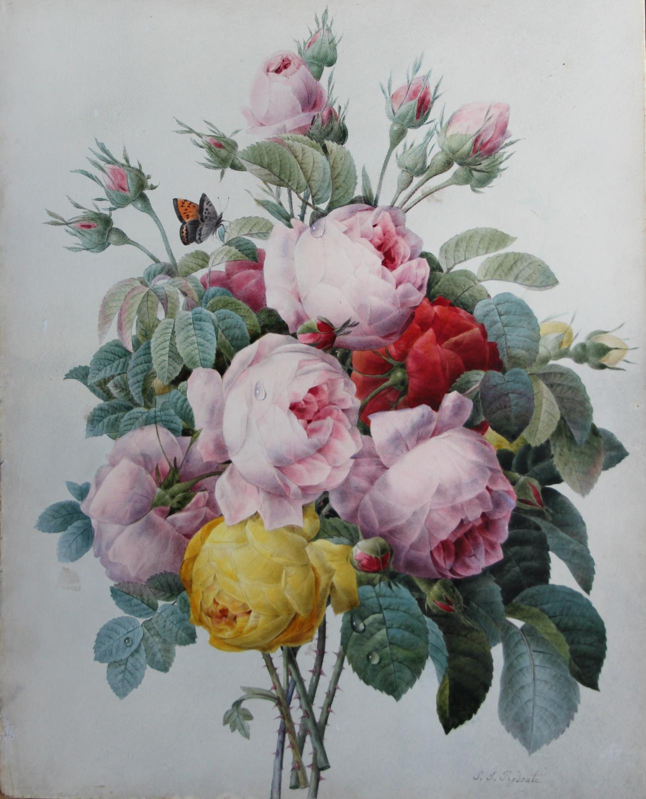 Pierre-Joseph Redouté (1759-1840), Bouquet de roses du papillon, aquarelle, 41x32,7cm. Le Havre, 9 mars 2014. Le Havre Enchères OVV. M.Millet. Adj