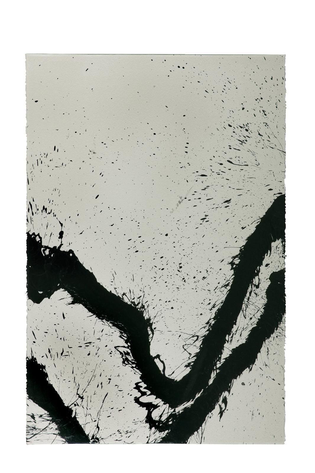 35000/45000€ sont demandés de cette rare et grande encre sur papier de Fabienne Verdier, Solo n°04 (198x134cm), réalisée en 2013 et