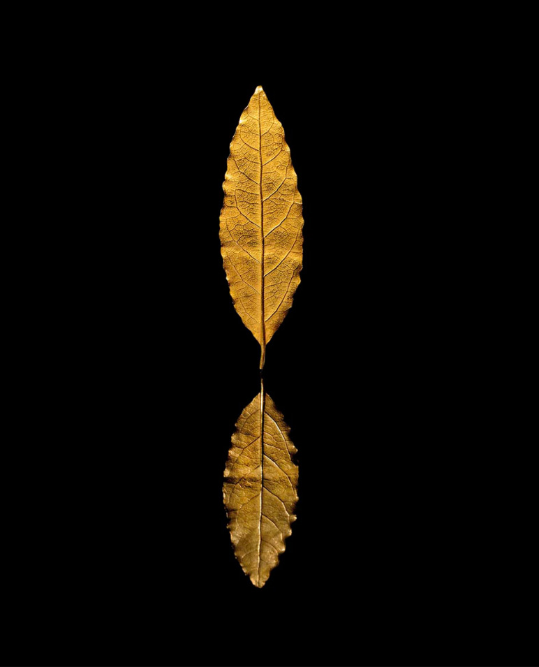 €650,000Martin Guillaume Biennais, 1804, gold laurel leaf from the crown worn by the Emperor during his coronation, with undulating edges