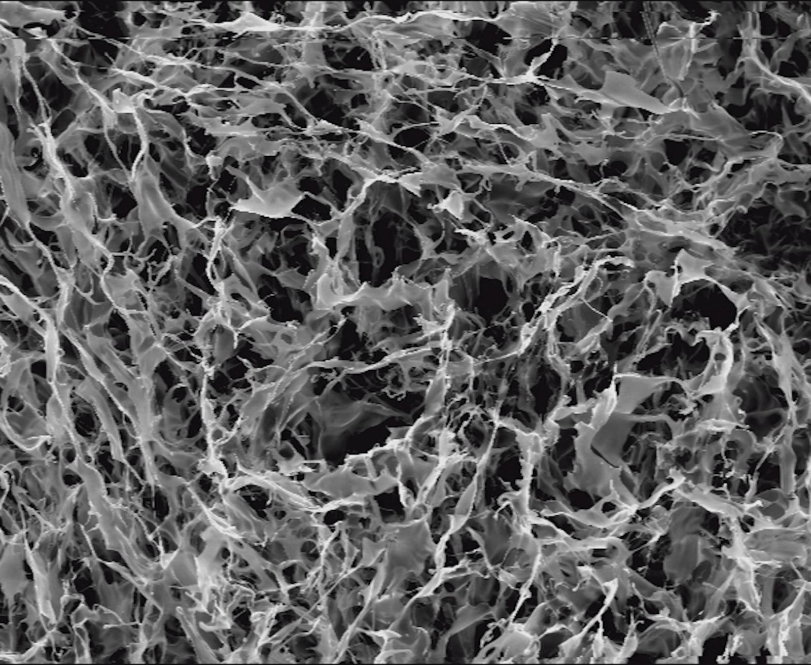 Image capturée par un microscope électronique à balayage (MEB) sur un matériau nano. Courtesy Gabriella Di Carlo