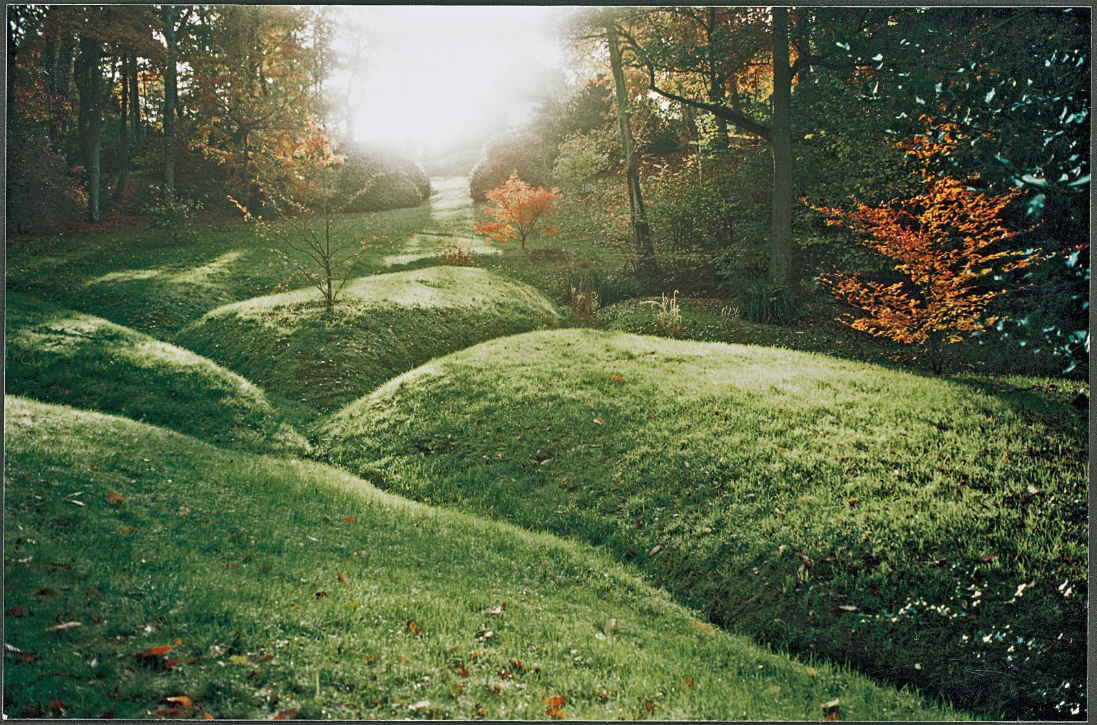 Le Bois de Morville