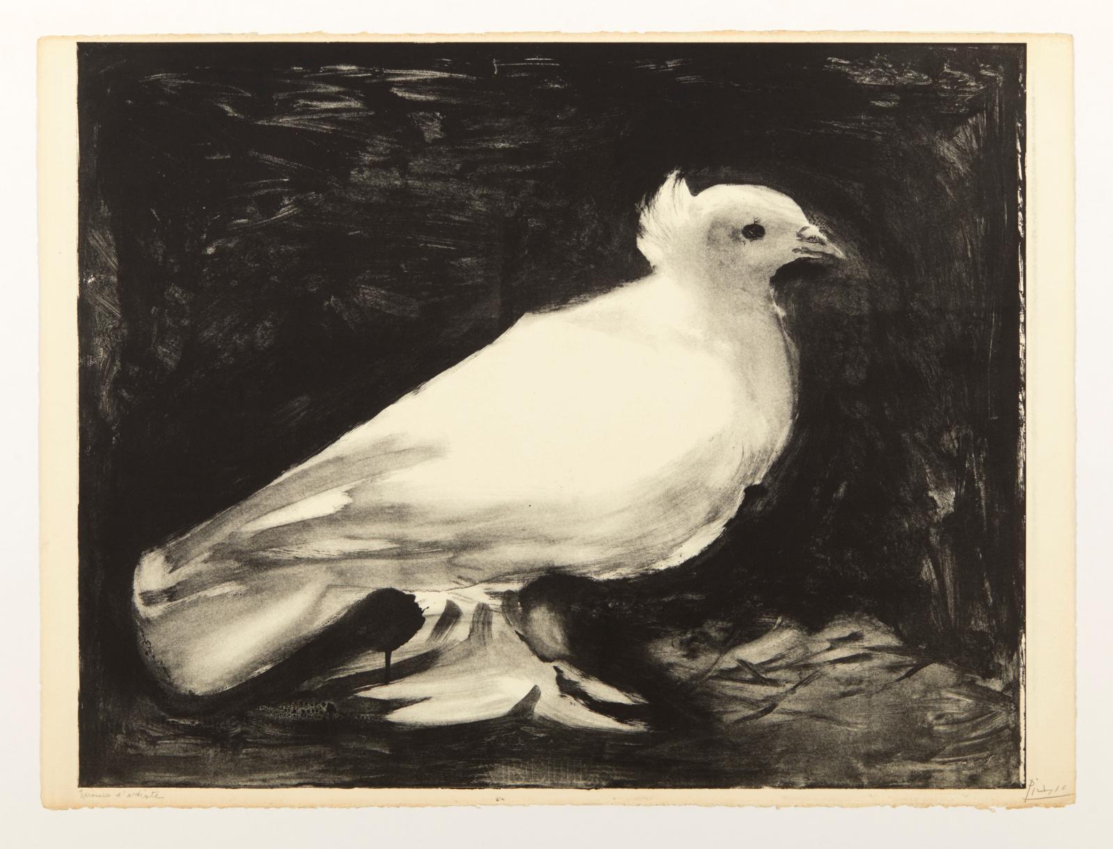 Pablo Picasso(1881-1973), La Colombe,9 janvier 1949, lithographie, épreuve d'artiste signéeau crayon noir au recto, 56,8x76,2cm. Est