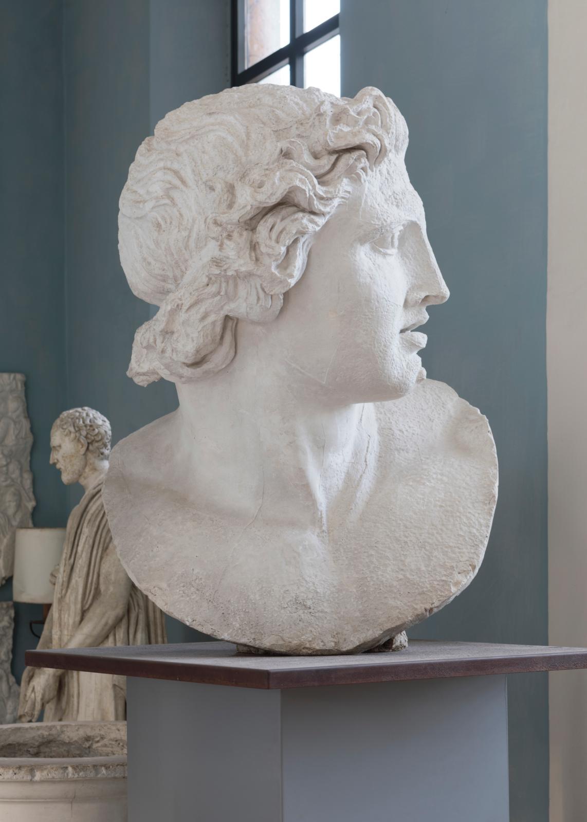 Moulage d'une tête d'Alexandre, dans la gypsothèque. © Académie de France à Rome - Villa Médicis
