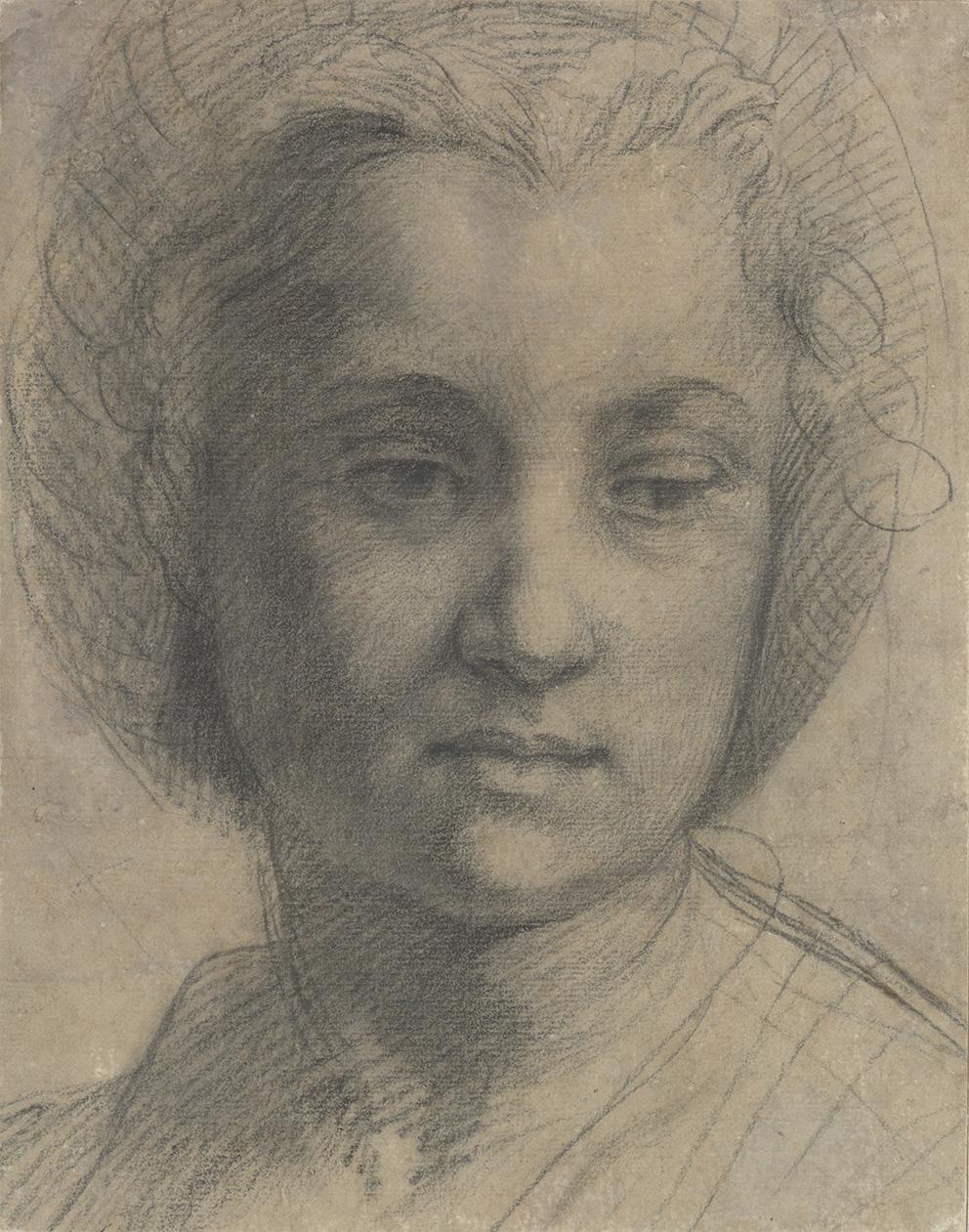 Andrea del Sarto (1486-1531), Tête d'une jeune femme, légèrement tournée vers la droite, vers 1517, pierre noire sur papier gris, 25,9 x 2