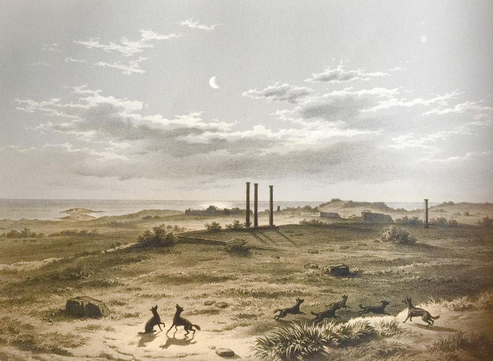 Vue générale de l'une des collines au nord de la nécropole de Cyrène.© Bibliothèque de l'INHA, collection Jacques Doucet