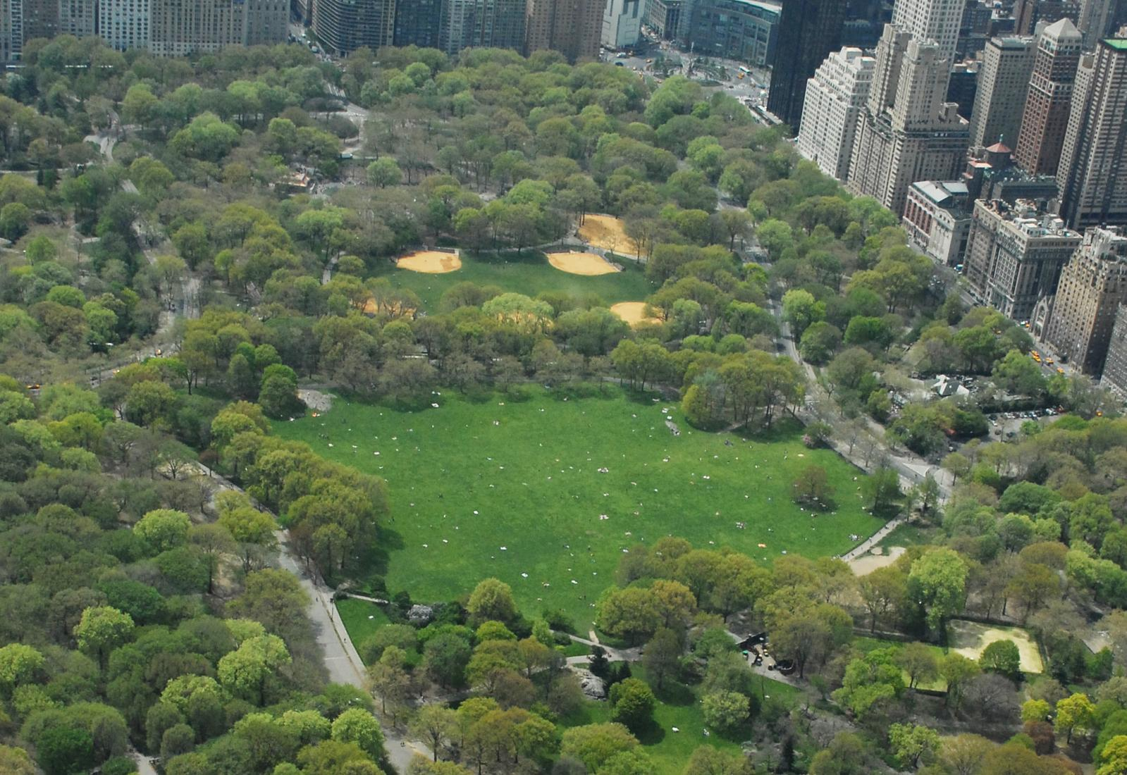 Sheep Meadow and Heckscher Ballfields after restoration.Courtesy of the Central Park Conservancy