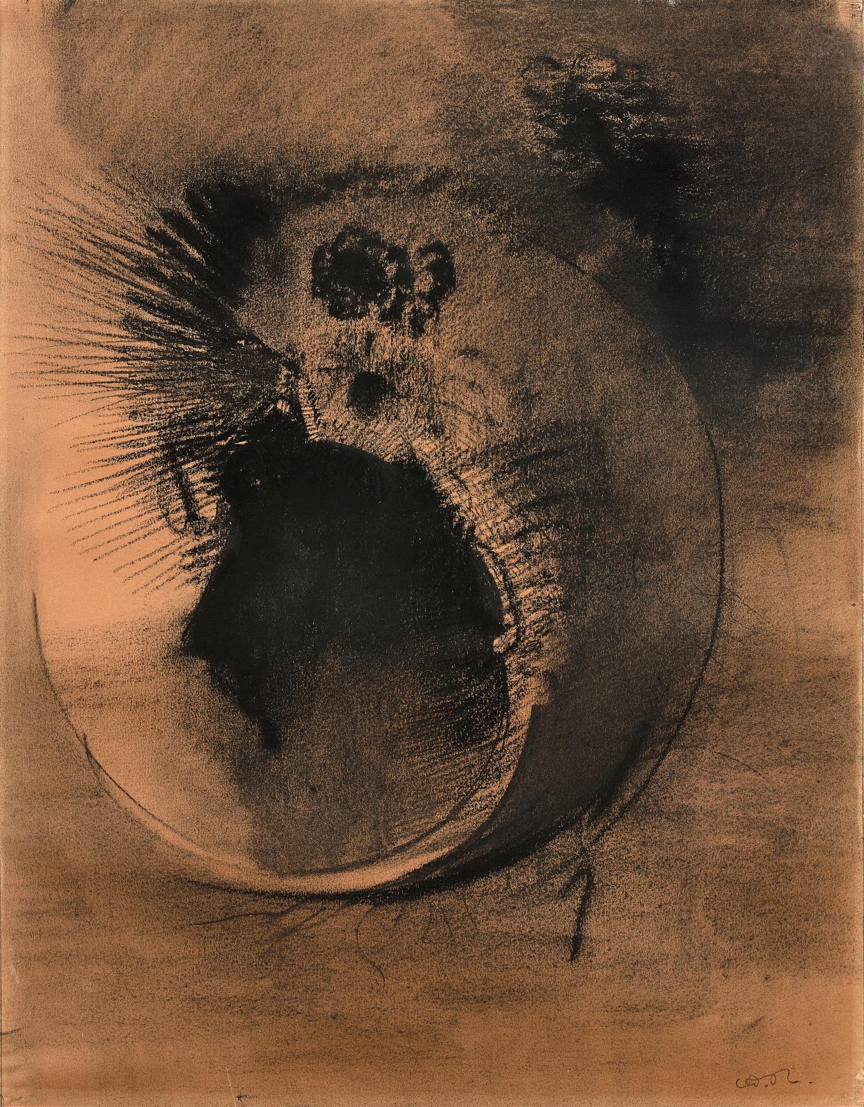 Odilon Redon, Visage cellulaire, dessin au fusain et à l'estompe, 48,5x37,5cm. Estimation: 80000/120000€