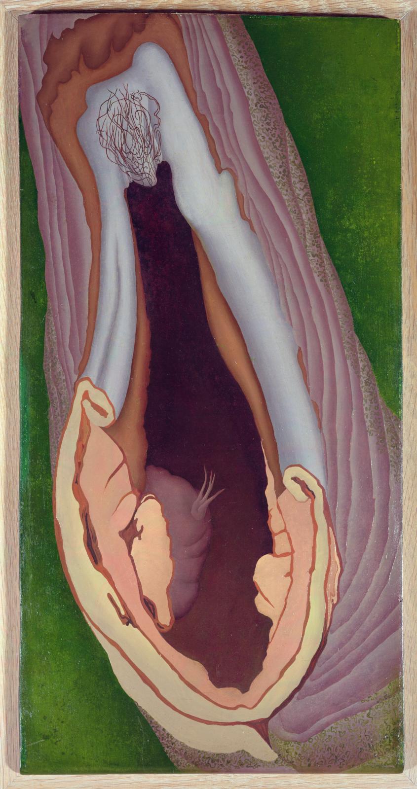 Ithell Colquhoun, Tree Anatomy, 1942, huile sur panneau, 57 x 29 cm, The Sherwin Collection, Leeds. © Bridgeman Images