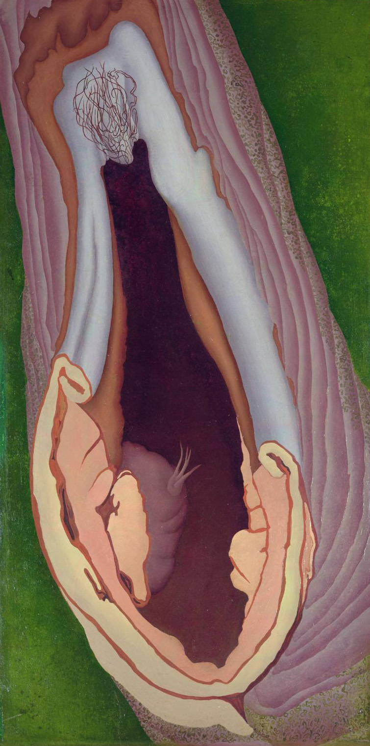 Ithell Colquhoun (1906-1988), Tree Anatomy, 1942, oil on panel, 57 x 29 cm/22.4 x 11.4 in, Sherwin Collection, Leeds.Bridgeman Images