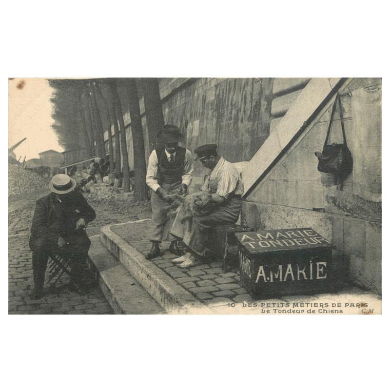 62€ 10 - Les Petits Métiers de Paris Le Tondeur de Chiens, éditeur C.M., carte postale ni écrite ni voyagée, dos séparé (petites taches).
