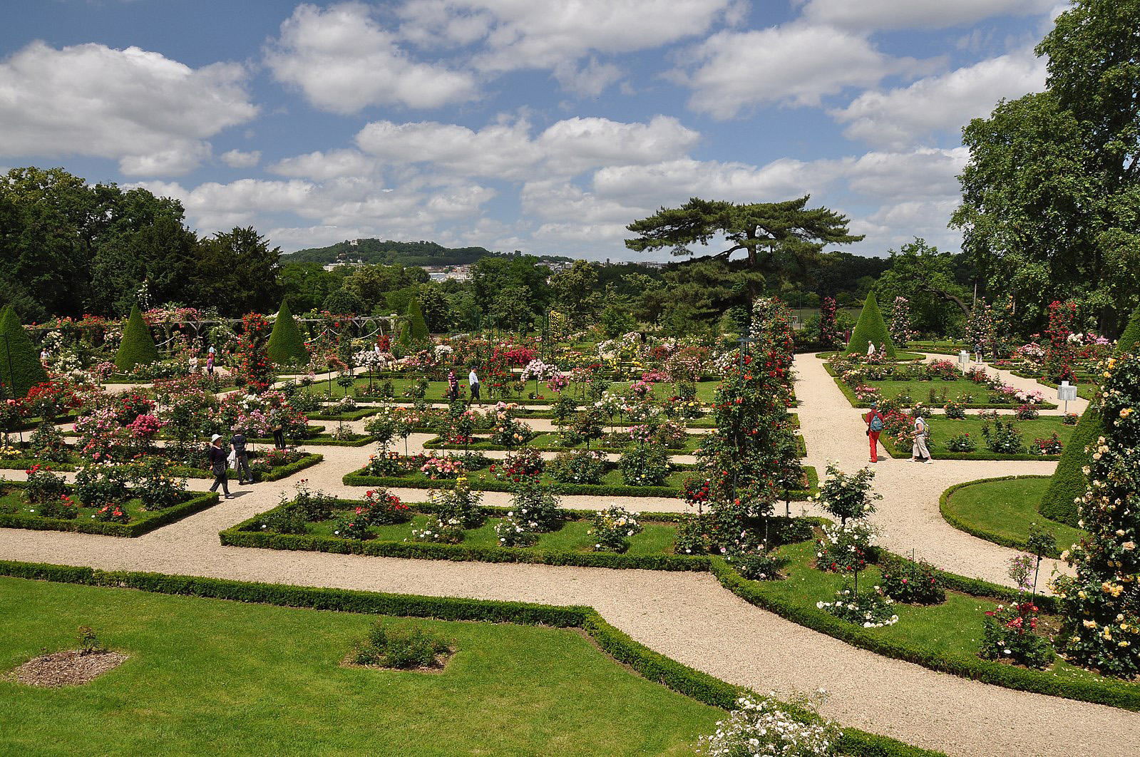 The Rose Garden of Bagatelle, ParisPhoto by Moonik