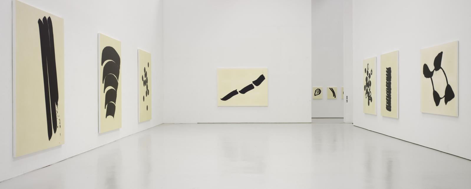 Vue de l'exposition «Lee Bae» au musée d'art moderne de Saint-Étienne Métropole, en 2011.