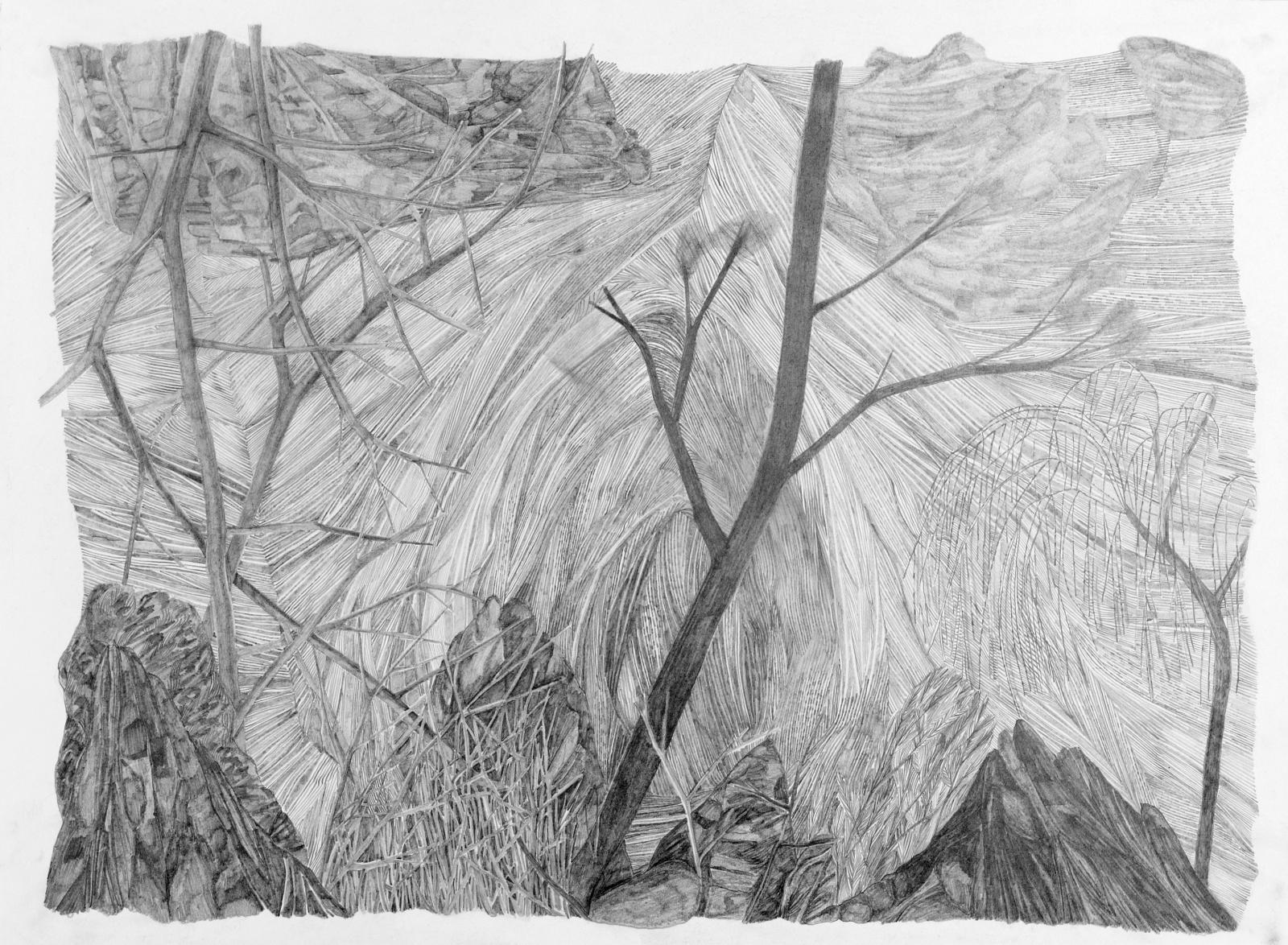 Eva Jospin, Sans titre, 2014, dessin 4, détail. © Eva Jospin courtesy Noirmontartproduction