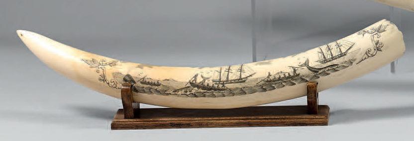 """806€ Travail de marin anglophone,vers 1920. Défense de morse polieet gravée d'une scène de chasseau cachalot, inscription The whalers """"Harmony"""" and"""